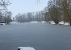 sneeuw 02