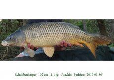 003 2019 03 30 Joachim Petitjean 102cm 11,1kg c