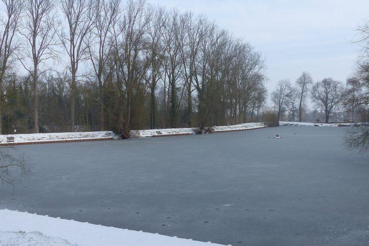 Winterbeelden januari 2018