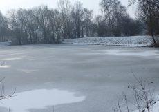 sneeuw 14