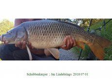 010 2018 07 01 Jan Lindebrings