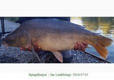 011 2018 07 01 Jan Lindebrings