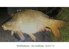 022 Jan Lindebrings 2018 07 31