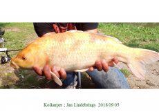 023 Jan Lindebrings 2018 09 05