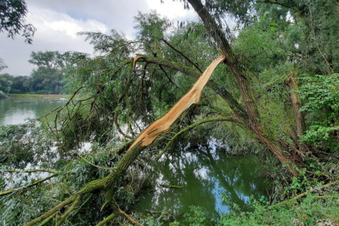 2020 08 15   –   Onweer over de Grand Pont visvijver